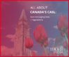 Facebook for Canada CASL mogli sms and whatsapp blog
